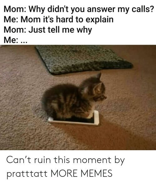 Dank, Memes, and Target: Mom: Why didn't you answer my calls?  Me: Mom it's hard to explain  Mom: Just tell me why  Me: ... Can't ruin this moment by pratttatt MORE MEMES
