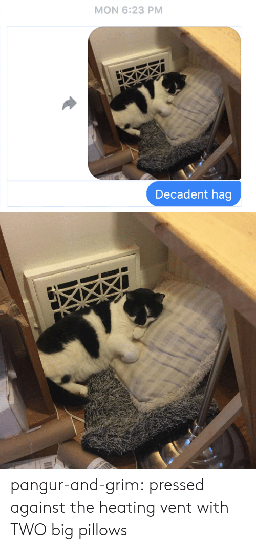pillows: MON 6:23 PM  Decadent hag pangur-and-grim: pressed against the heating vent with TWO big pillows