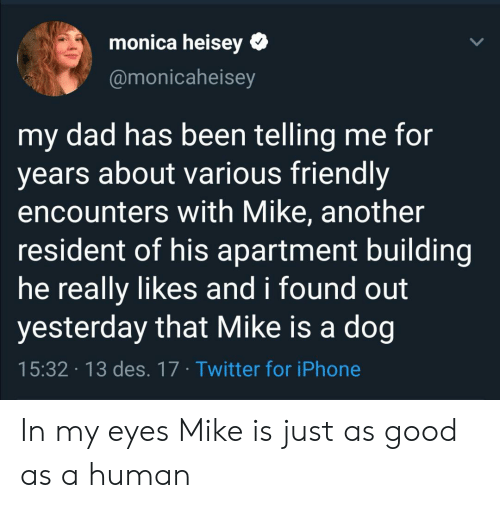 Telling Me: monica heisey  @monicaheisey  my dad has been telling me for  years about various friendly  encounters with Mike, another  resident of his apartment building  he really likes and i found out  yesterday that Mike is a dog  15:32 13 des. 17 Twitter for iPhone In my eyes Mike is just as good as a human