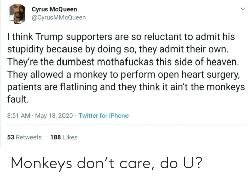 Do U: Monkeys don't care, do U?