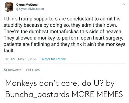 care: Monkeys don't care, do U? by Buncha_bastards MORE MEMES
