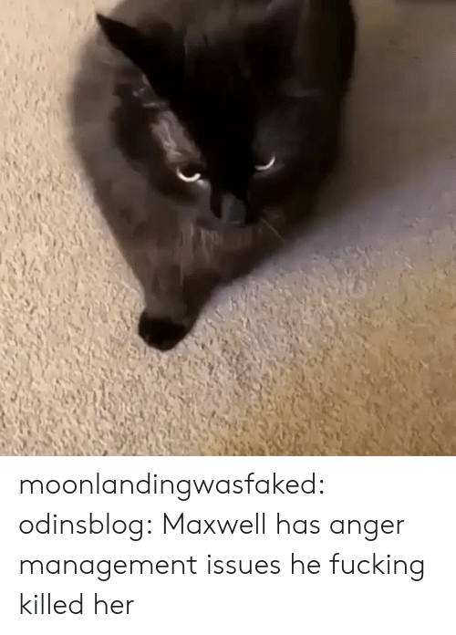 Anger Management: moonlandingwasfaked: odinsblog:   Maxwell has anger management issues   he fucking killed her