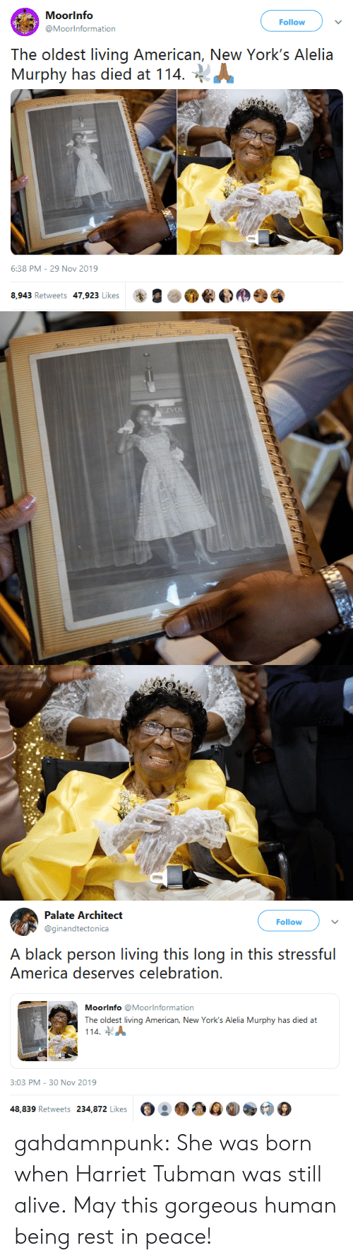 Alive, America, and Tumblr: Moorinfo  Follow  @Moorinformation  The oldest living American, New York's Alelia  Murphy has died at 114  6:38 PM - 29 Nov 2019  8,943 Retweets 47,923 Likes   EZVOL   Palate Architect  Follow  @ginandtectonica  A black person living this long in this stressful  America deserves celebration.  Moorinfo @Moorlnformation  The oldest living American, New York's Alelia Murphy has died at  114  3:03 PM - 30 Nov 2019  48,839 Retweets 234,872 Likes gahdamnpunk: She was born when Harriet Tubman was still alive. May this gorgeous human being rest in peace!