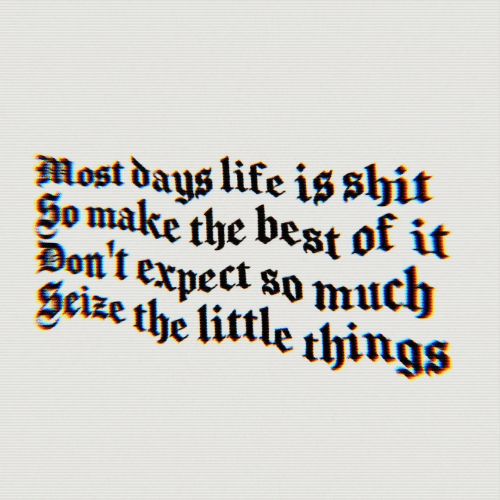 Life, Shit, and Best: Most days life is shit  So make the best of it  Don't expect so much  Scize the little things
