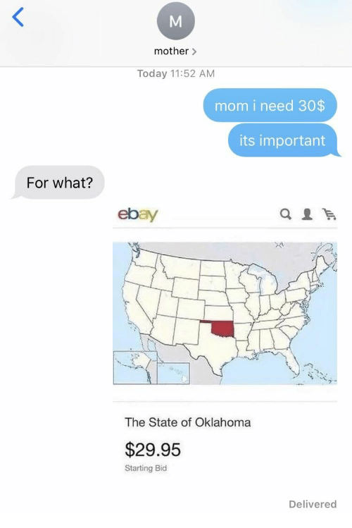 Oklahoma: mother>  Today 11:52 AM  mom i need 30$  its important  For what?  ebay  The State of Oklahoma  $29.95  Starting Bid  Delivered