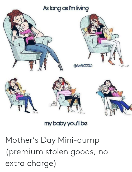 charge: Mother's Day Mini-dump (premium stolen goods, no extra charge)
