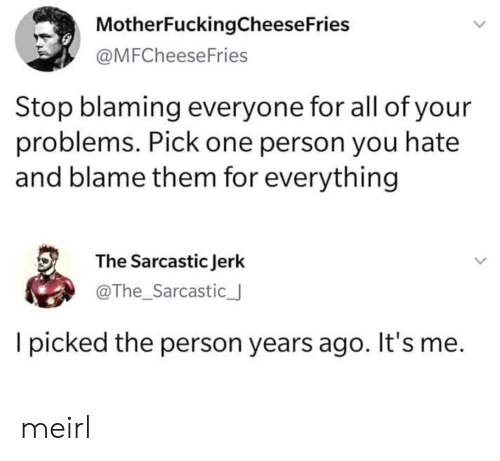 MeIRL, One, and Blame: MotherFuckingCheese Fries  @MFCheeseFries  Stop blaming everyone for all of your  problems. Pick one person you hate  and blame them for everything  The Sarcastic Jerk  @The_Sarcastic_  picked the person years ago. It's me. meirl