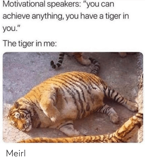 """Achieve: Motivational speakers: """"you can  achieve anything, you have a tiger in  you.""""  The tiger in me: Meirl"""