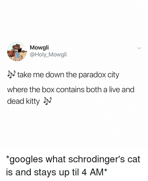 Paradox: Mowgli  @Holy_Mowgli  take me down the paradox city  where the box contains both a live and  dead kitty JM *googles what schrodinger's cat is and stays up til 4 AM*