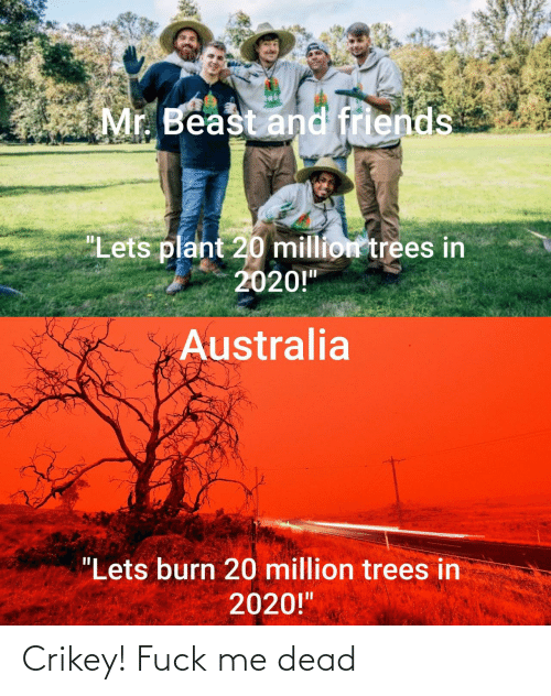 "Trees: Mr. Beast and friends  ""Lets plant 20 million trees in  2020!""  Australia  ""Lets burn 20 million trees in  2020!"" Crikey! Fuck me dead"