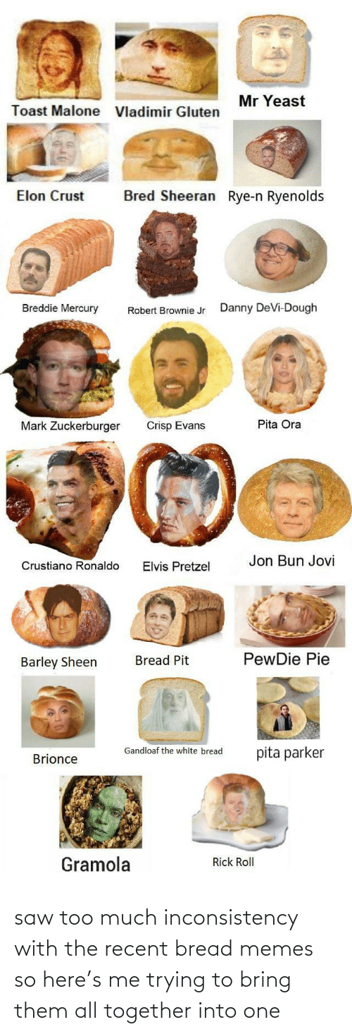 robert: Mr Yeast  Toast Malone  Vladimir Gluten  Bred Sheeran Rye-n Ryenolds  Elon Crust  Breddie Mercury  Danny DeVi-Dough  Robert Brownie Jr  Pita Ora  Mark Zuckerburger  Crisp Evans  Jon Bun Jovi  Crustiano Ronaldo  Elvis Pretzel  PewDie Pie  Bread Pit  Barley Sheen  Gandloaf the white bread  pita parker  Brionce  Gramola  Rick Roll saw too much inconsistency with the recent bread memes so here's me trying to bring them all together into one
