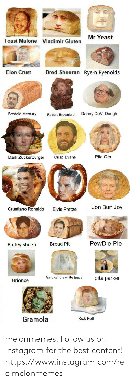 robert: Mr Yeast  Toast Malone  Vladimir Gluten  Bred Sheeran Rye-n Ryenolds  Elon Crust  Breddie Mercury  Danny DeVi-Dough  Robert Brownie Jr  Pita Ora  Mark Zuckerburger  Crisp Evans  Jon Bun Jovi  Crustiano Ronaldo  Elvis Pretzel  PewDie Pie  Bread Pit  Barley Sheen  Gandloaf the white bread  pita parker  Brionce  Gramola  Rick Roll melonmemes:  Follow us on Instagram for the best content! https://www.instagram.com/realmelonmemes