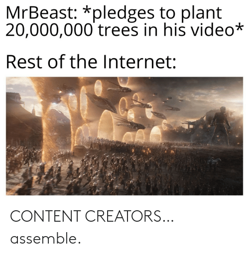 assemble: MrBeast: *pledges to plant  20,000,000 trees in his video*  Rest of the Internet: CONTENT CREATORS… assemble.