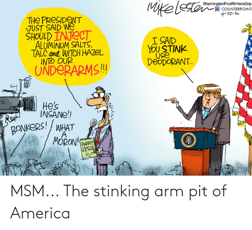 arm: MSM... The stinking arm pit of America
