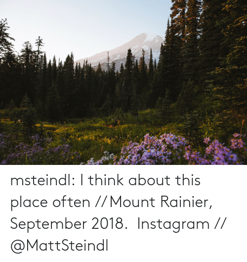 i think: msteindl: I think about this place often // Mount Rainier, September 2018.    Instagram // @MattSteindl