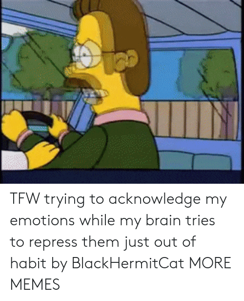 TFW: mu TFW trying to acknowledge my emotions while my brain tries to repress them just out of habit by BlackHermitCat MORE MEMES