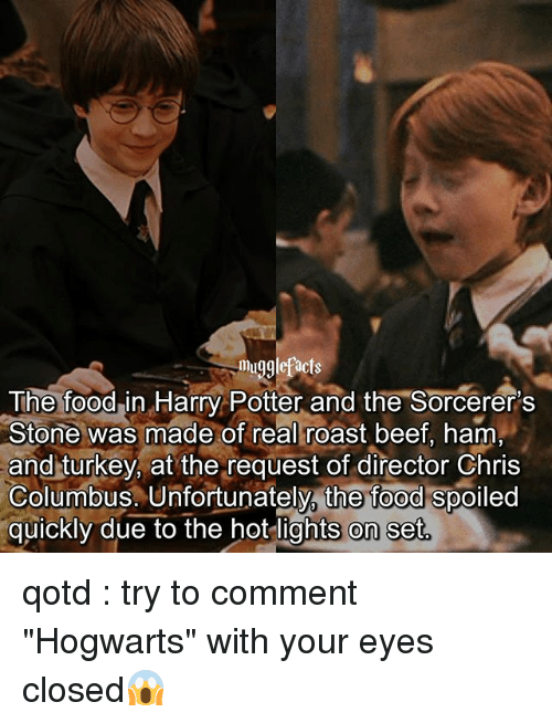 """Roastes: mugglefacts  The foodin Harry Potter and the Sorcerer's  Stone was made of real roast beef, ham  and turkey, at the request of director Chris  Columbus. Unfortunately, the food spoiled  quickly due to the hot lights on set qotd : try to comment """"Hogwarts"""" with your eyes closed😱"""