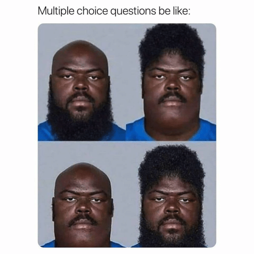 questions: Multiple choice questions be like: