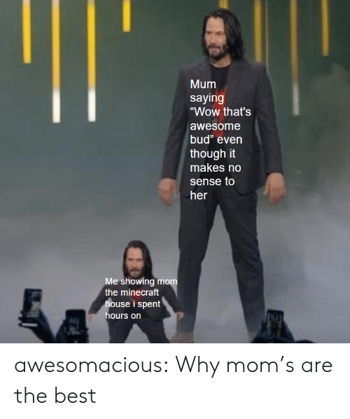 """Minecraft, Moms, and Tumblr: Mum  saying  """"Wow that's  awesome  bud"""" even  though it  makes no  sense to  her  Me showing mom  the minecraft  house i spent  hours on awesomacious:  Why mom's are the best"""