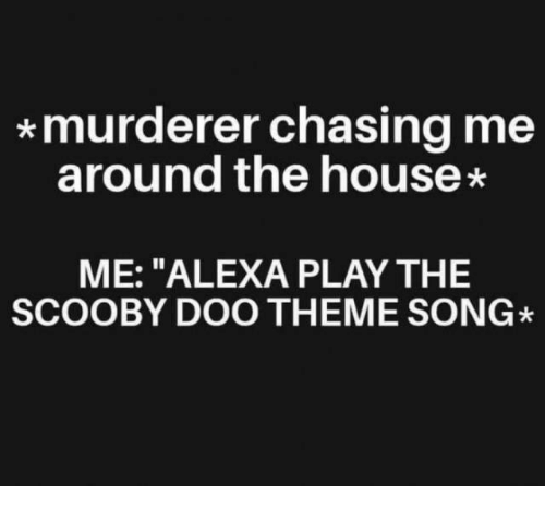 """Dank, Scooby Doo, and House: *murderer chasing me  around the house  ME: """"ALEXA PLAY THE  SCOOBY DOO THEME SONG"""