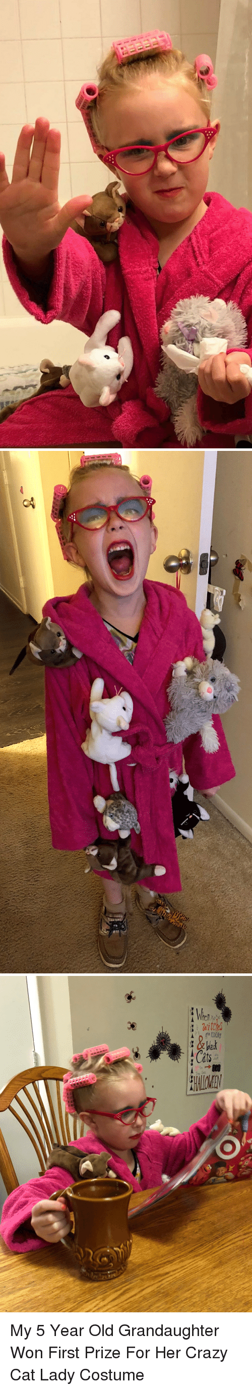 Crazy, Funny, and Old: My 5 Year Old Grandaughter Won First Prize For Her Crazy Cat Lady Costume