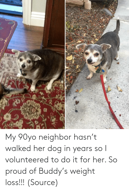 Proud: My 90yo neighbor hasn't walked her dog in years so I volunteered to do it for her. So proud of Buddy's weight loss!!! (Source)