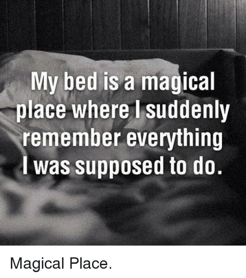 A Magical Place: My bed is a magical  % place where I|suddenly  remember everything  I was supposed to do. <p>Magical Place.</p>
