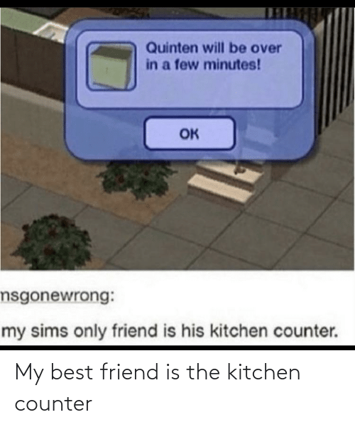 friend: My best friend is the kitchen counter
