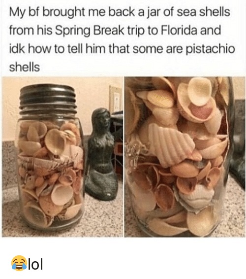 Memes, Spring Break, and Break: My bf brought me back a jar of sea shells  from his Spring Break trip to Florida and  idk how to tell him that some are pistachio  shells 😂lol