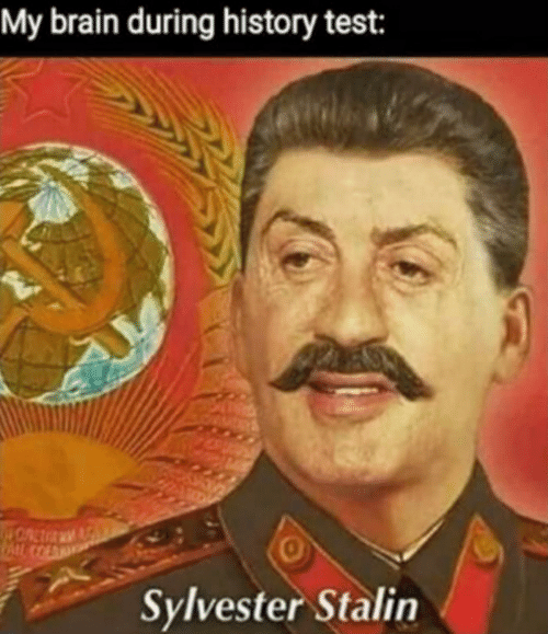 Brain, History, and Test: My brain during history test:  0  Sylvester Stalin