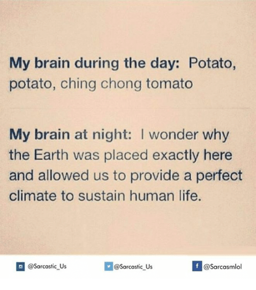 sustainability: My brain during the day: Potato,  potato, ching chong tomato  My brain at night: I wonder why  the Earth was placed exactly here  and allowed us to provide a perfect  climate to sustain human life.  If @Sarcastic US  @sarcastic Us  @Sarcasmlol