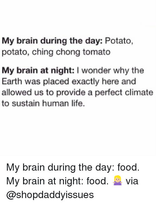 sustainability: My brain during the day: Potato,  potato, ching chong tomato  My brain at night: I wonder why the  Earth was placed exactly here and  allowed us to provide a perfect climate  to sustain human life. My brain during the day: food. My brain at night: food. 🤷🏼‍♀️ via @shopdaddyissues