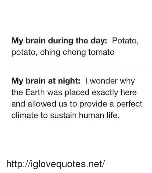 chong: My brain during the day: Potato,  potato, ching chong tomato  My brain at night: I wonder why  the Earth was placed exactly here  and allowed us to provide a perfect  climate to sustain human life. http://iglovequotes.net/