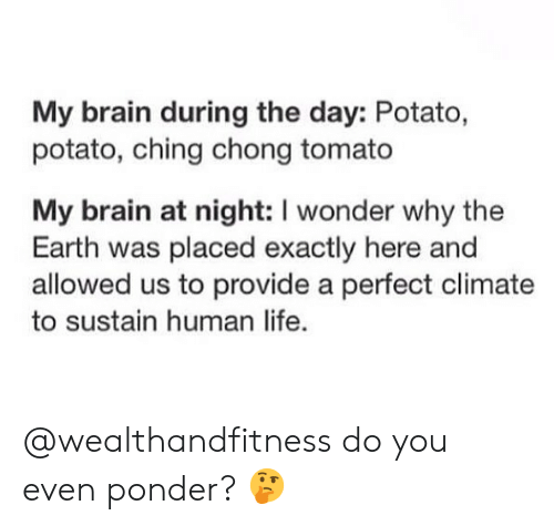 chong: My brain during the day: Potato,  potato, ching chong tomato  My brain at night: I wonder why the  Earth was placed exactly here and  allowed us to provide a perfect climate  to sustain human life. @wealthandfitness do you even ponder? 🤔