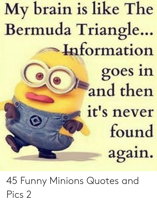 Bermuda: My brain is like The  Bermuda Triangle..  Information  goes in  and then  it's never  found  again 45 Funny Minions Quotes and Pics 2