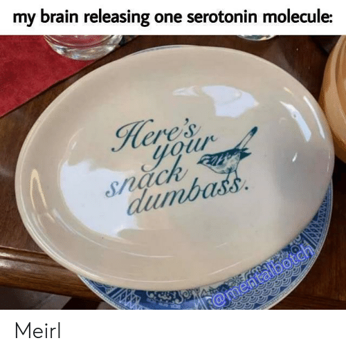 Brain, MeIRL, and Serotonin: my brain releasing one serotonin molecule:  Here's  gour  Snach  dumbass  @mentalbotch Meirl