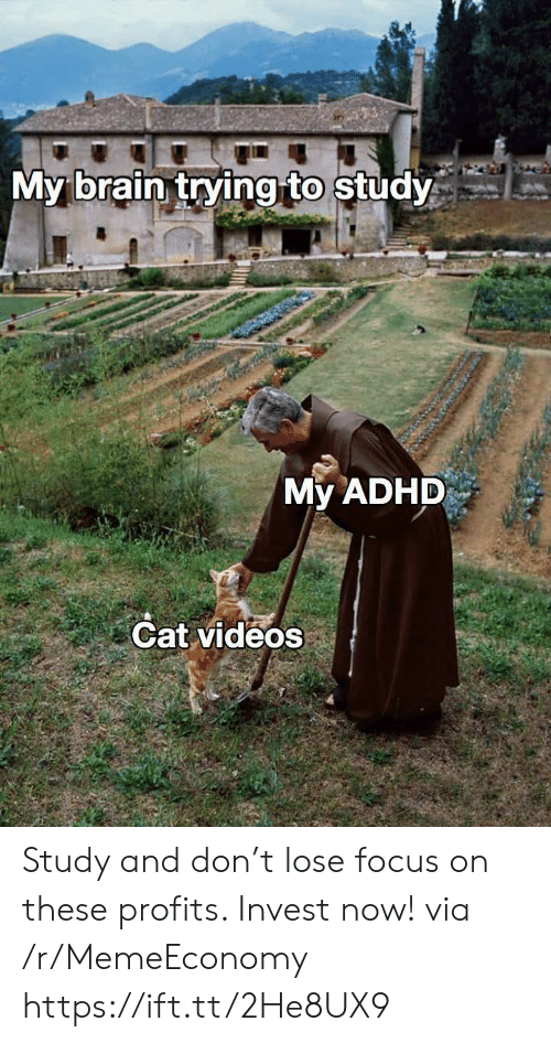 Adhd: My brain trying to study  My ADHD  Cat videos Study and don't lose focus on these profits. Invest now! via /r/MemeEconomy https://ift.tt/2He8UX9