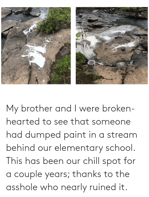 Dumped: My brother and I were broken-hearted to see that someone had dumped paint in a stream behind our elementary school. This has been our chill spot for a couple years; thanks to the asshole who nearly ruined it.