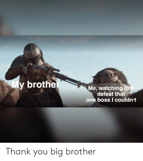 Thank You, Big Brother, and Brother: My brother  Me, watching him  defeat that  one boss I couldn't Thank you big brother