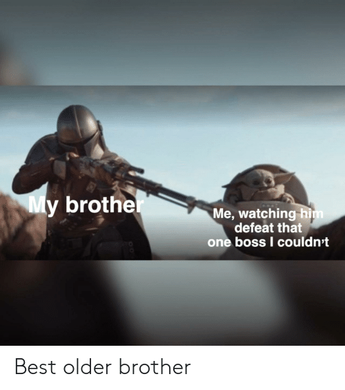 Best, Brother, and Boss: My brother  Me, watching him  defeat that  one boss I couldn't Best older brother