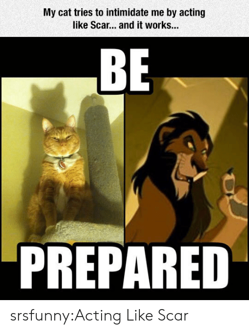intimidate: My cat tries to intimidate me by acting  like Scar... and it works...  BE  PREPARED srsfunny:Acting Like Scar