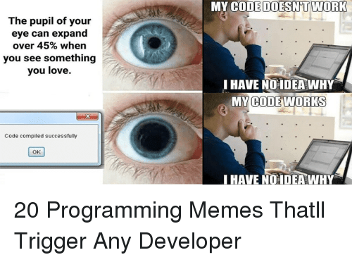 My Code Doesnt Work: MY CODE DOESN'T WORK  The pupil of your  eye  can expand  over 45% when  you see something  you love.  I HAVE NO IDEA WHY  MY WORKS  CODE  Code compiled successfully  OK  HAVE NO IDEAWHY 20 Programming Memes Thatll Trigger Any Developer