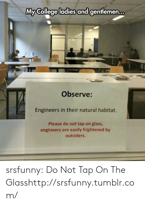 On The Glass: My College ladies and genflemen.  Observe:  Engineers in their natural habitat.  Please do not tap on glass,  engineers are easily frightened by  outsiders. srsfunny:  Do Not Tap On The Glasshttp://srsfunny.tumblr.com/