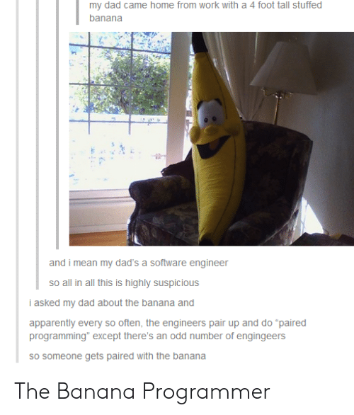 """Suspicious: my dad came home from work with a 4 foot tall stuffed  banana  and i mean my dad's a software engineer  so all in all this is highly suspicious  i asked my dad about the banana and  apparently every so often, the engineers pair up and do """"paired  programming"""" except there's an odd number of engingeers  sO someone gets paired with the banana The Banana Programmer"""