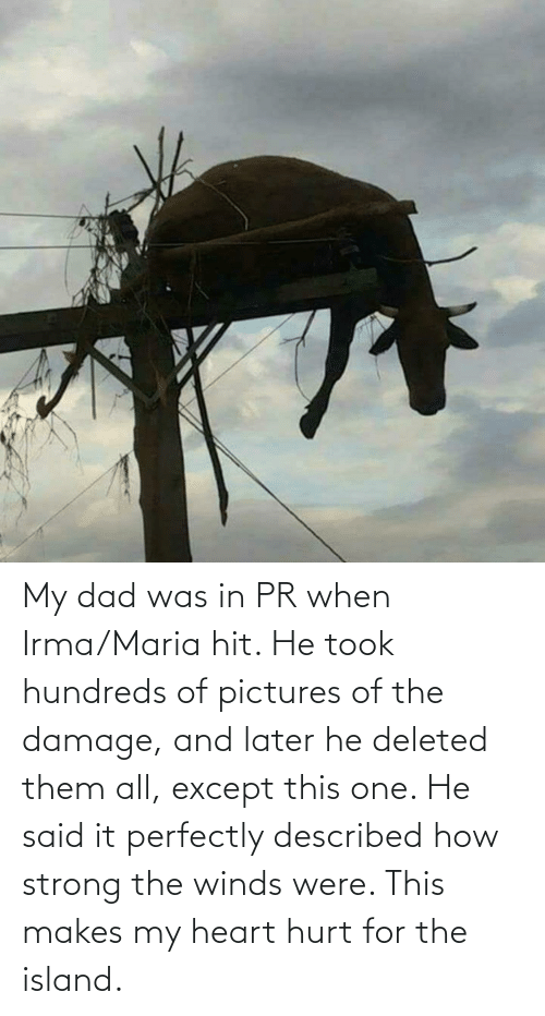 island: My dad was in PR when Irma/Maria hit. He took hundreds of pictures of the damage, and later he deleted them all, except this one. He said it perfectly described how strong the winds were. This makes my heart hurt for the island.