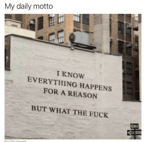 the fuck: My daily motto  I KNOW  EVERYTHING HAPPENS  FOR A REASON  BUT WHAT THE FUCK  WAY  @highfiveexnert  FF