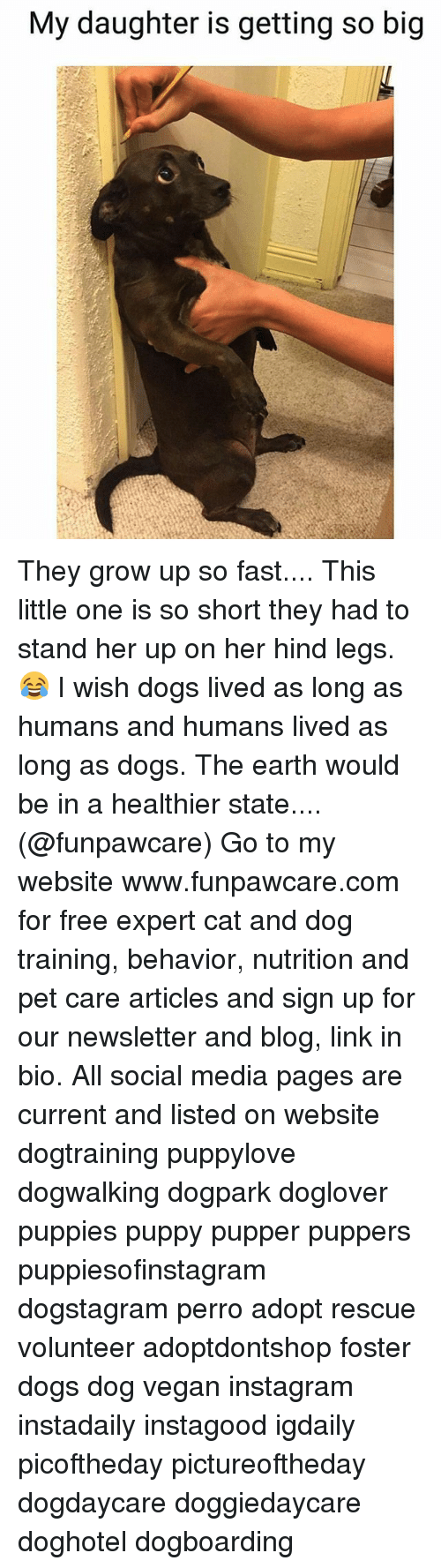Dogs, Growing Up, and Instagram: My daughter is getting so big They grow up so fast.... This little one is so short they had to stand her up on her hind legs. 😂 I wish dogs lived as long as humans and humans lived as long as dogs. The earth would be in a healthier state....(@funpawcare) Go to my website www.funpawcare.com for free expert cat and dog training, behavior, nutrition and pet care articles and sign up for our newsletter and blog, link in bio. All social media pages are current and listed on website dogtraining puppylove dogwalking dogpark doglover puppies puppy pupper puppers puppiesofinstagram dogstagram perro adopt rescue volunteer adoptdontshop foster dogs dog vegan instagram instadaily instagood igdaily picoftheday pictureoftheday dogdaycare doggiedaycare doghotel dogboarding
