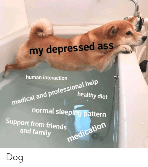 Ass, Family, and Friends: my depressed ass  human interaction  medical and professional help  healthy diet  normal sleeping pattern  Support from friends  and family  medication Dog