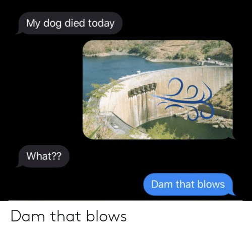 Today, Dank Memes, and Dog: My dog died today  What??  Dam that blows Dam that blows