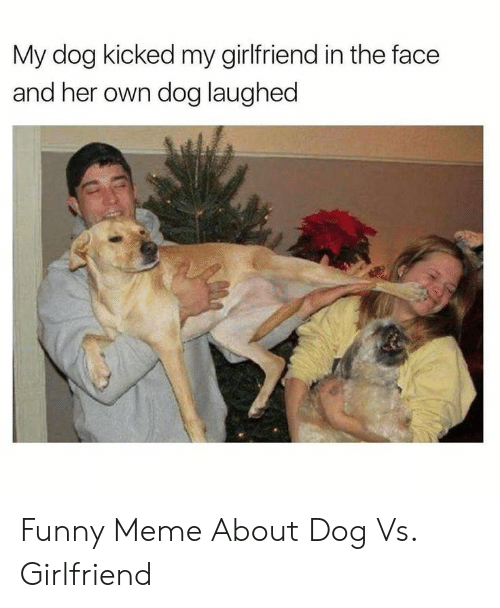 meme about: My dog kicked my girlfriend in the face  and her own dog laughed Funny Meme About Dog Vs. Girlfriend